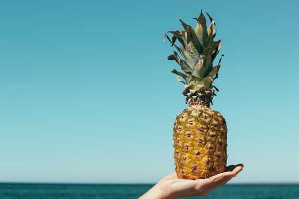 Pineapple on the beach
