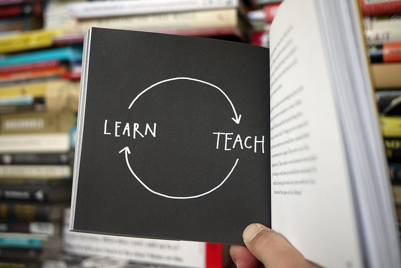 Learn Teach