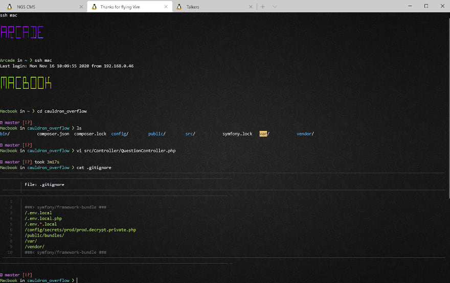 Screenshot of a dark terminal with a subtle background pattern