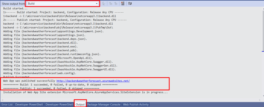 Backend webapp publish output