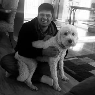 Rakshit Sinha ⚡ profile picture