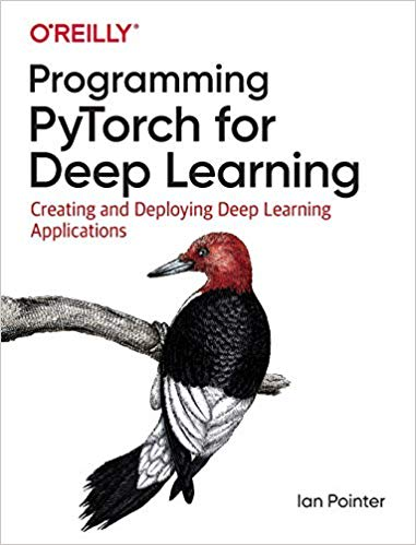 Programming-PyTorch-for-Deep-Learning