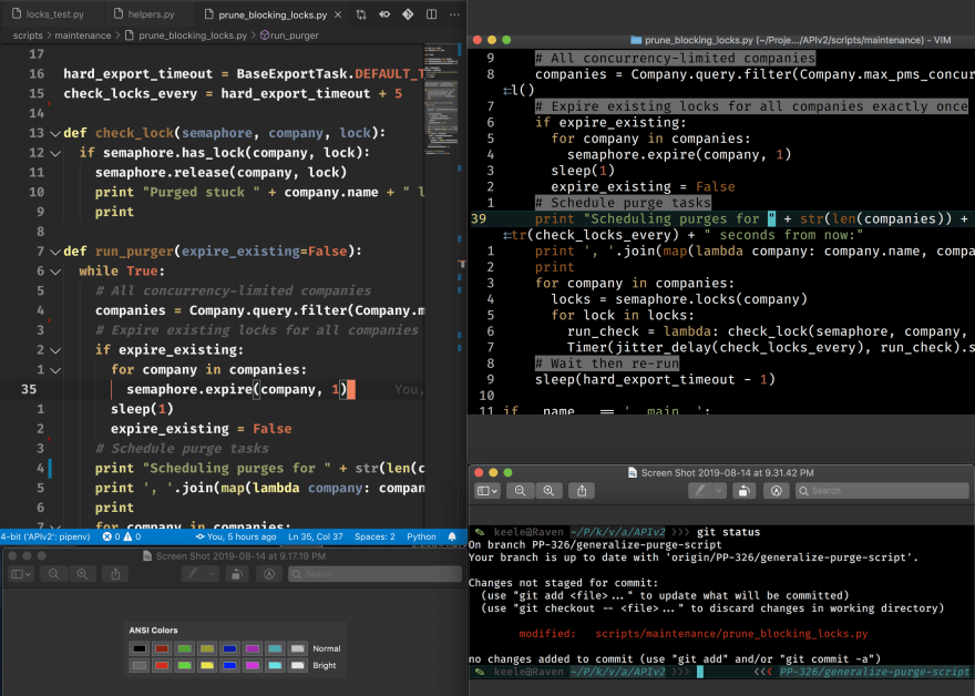 VS Code, VIM, and ANSI Colors