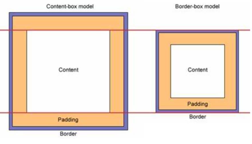 box model property