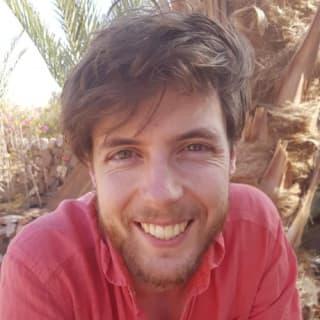 Tinco Andringa profile picture