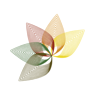 dein Software logo