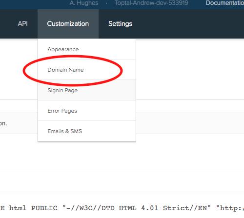 Customize Domain Name