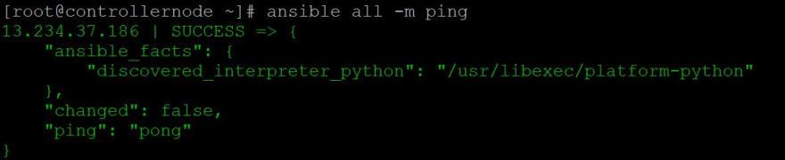 2 ping.JPG