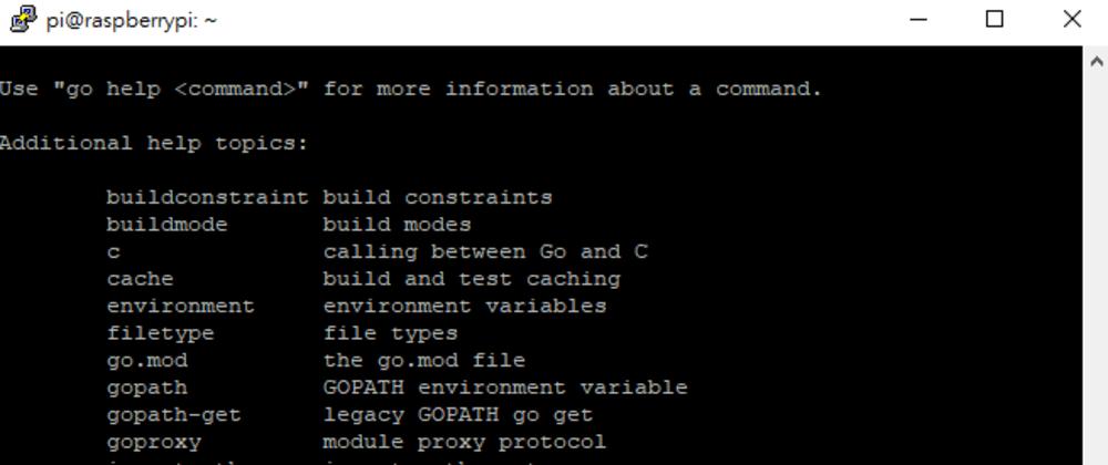 Cover image for Install Go on Raspberry Pi OS (Shortest Tutorial)
