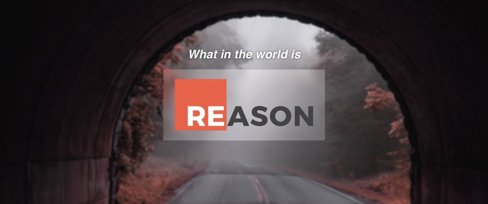 Cover image for What is Reason?