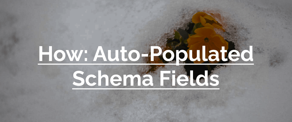 Cover image for How: Auto-Populated Schema Fields in AWS Amplify