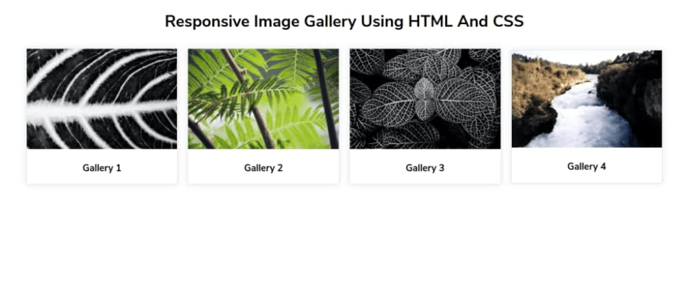 Cover image for Responsive Image Gallery Using HTML And CSS