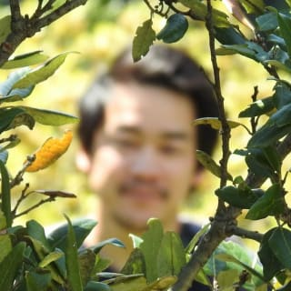 UnoDwicho profile picture