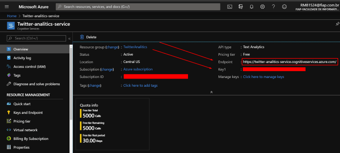 Tela do serviço criado no Azure