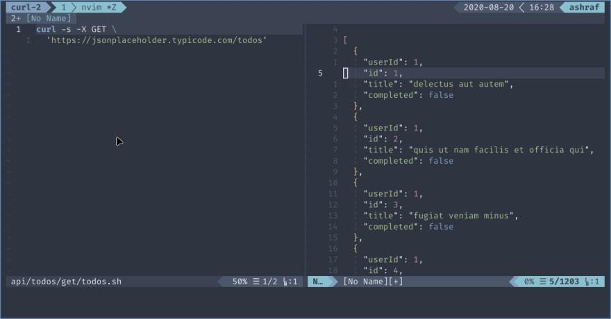 screenshot of before vim command
