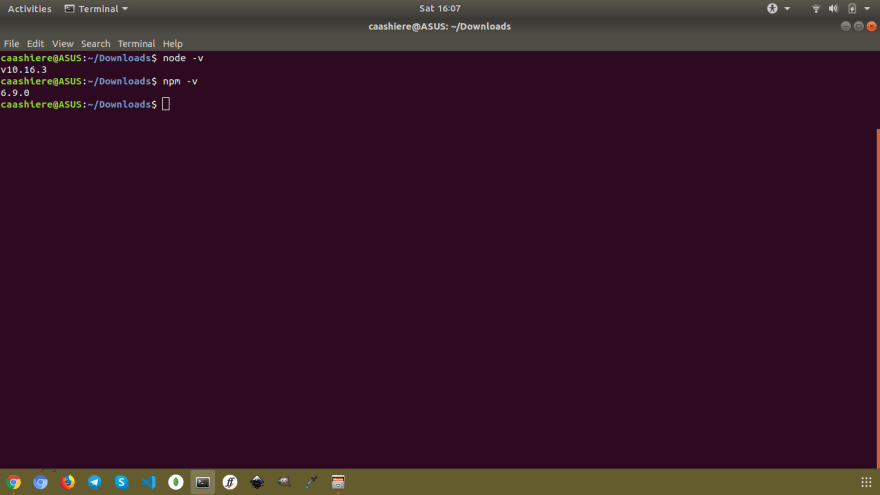 A screenshot of terminal, showing node and npm versions