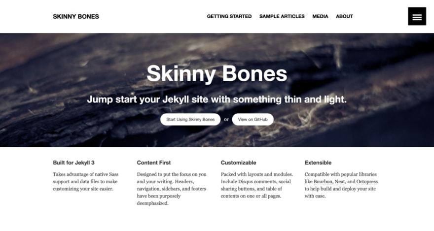 skinny bones theme preview