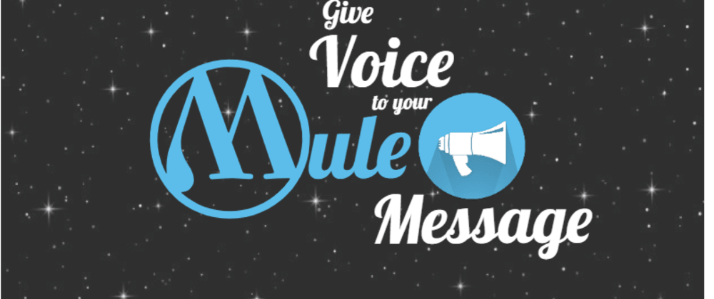 Cover image for Give Voice to Your Mule Message