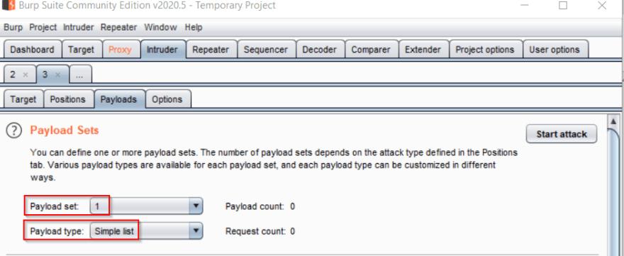 Intruder Payload Sets