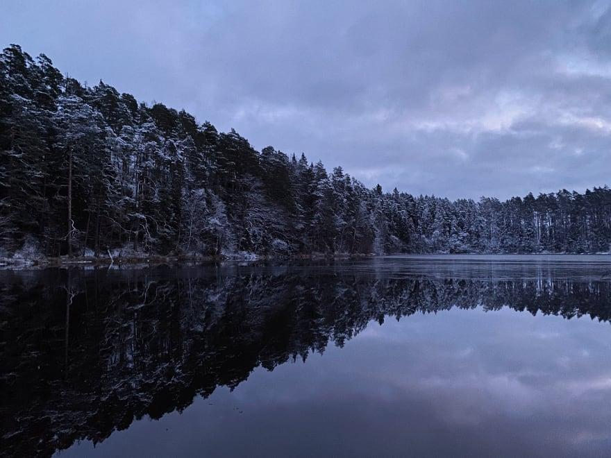 A cold dark winter's day in Paukjärve (Bang Lake), Estonia