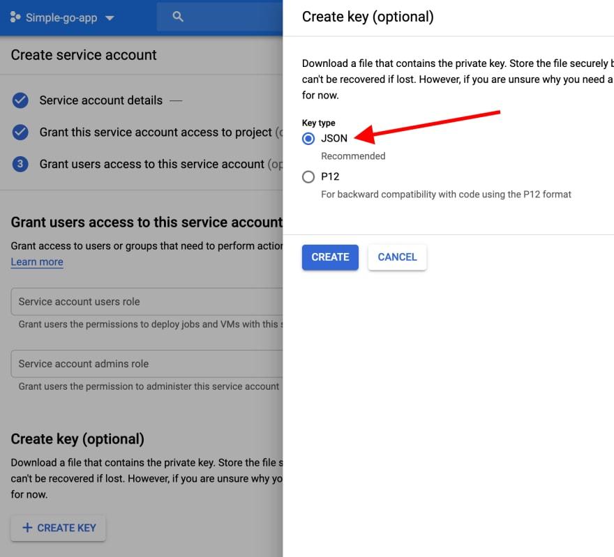 Step 4: choose the JSON option.