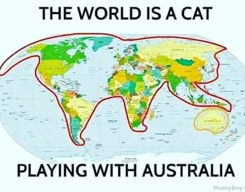 Image of an outline of a cat around countries on a map