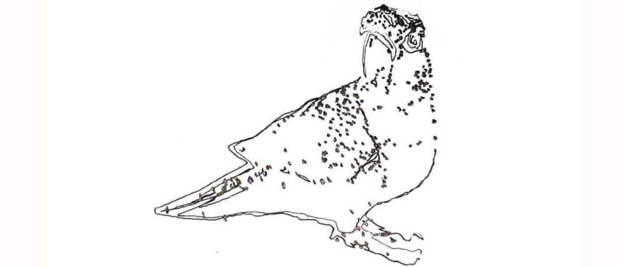 lovebird sketch drawn by line-us robot