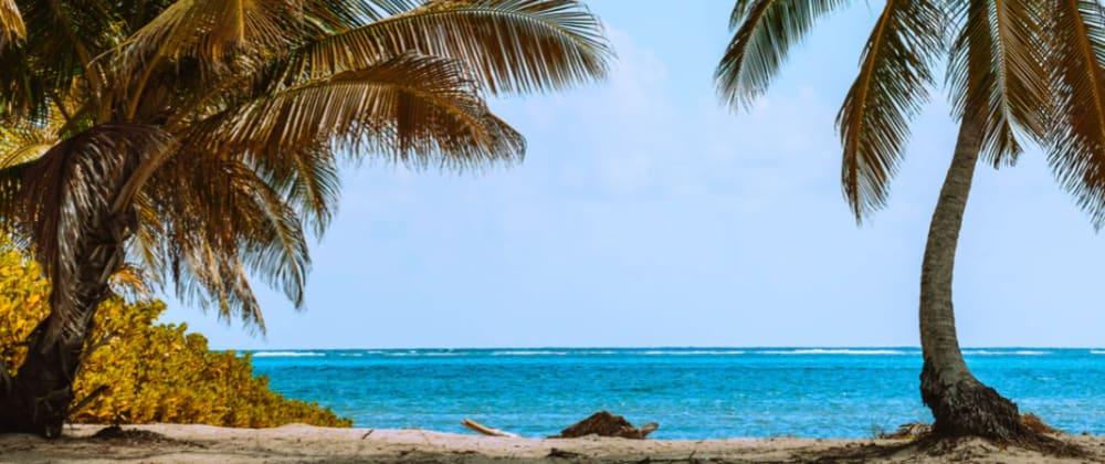 Cover image for 🏝 Desert island apps