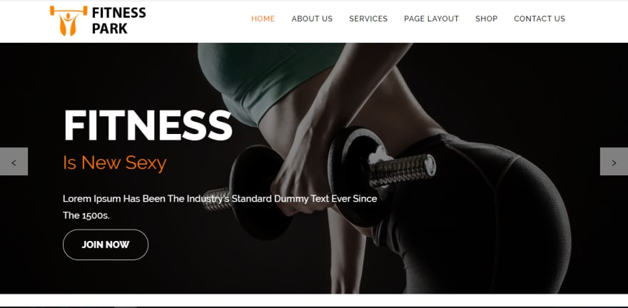 Fitness Park is an impressive free sports WordPress theme