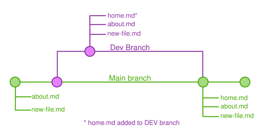 Example of how branches work