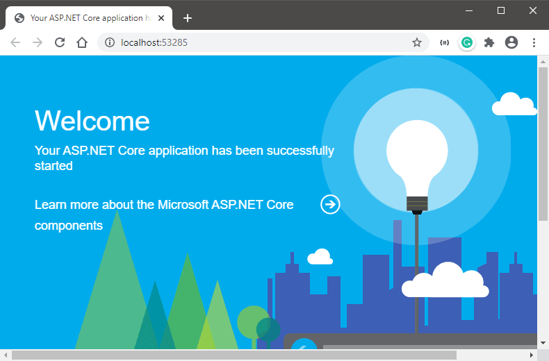 Custom Middleware showing Welcome Page