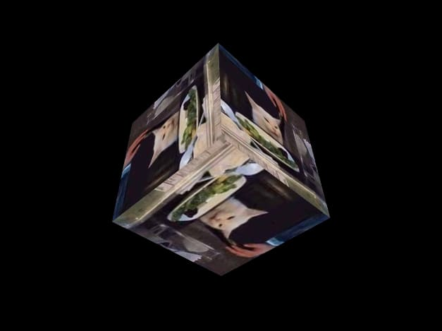 a cube with the cat from cat and women meme as a texture