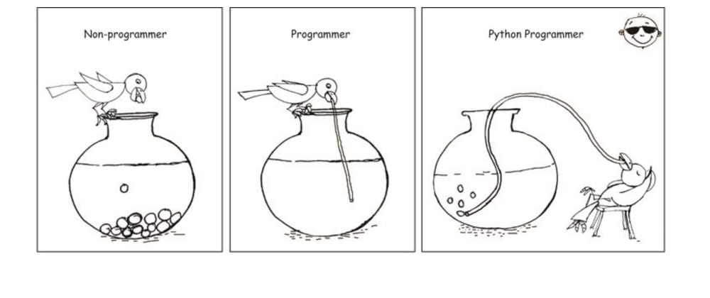 Cover image for Why learn Python Programming language in 2021?