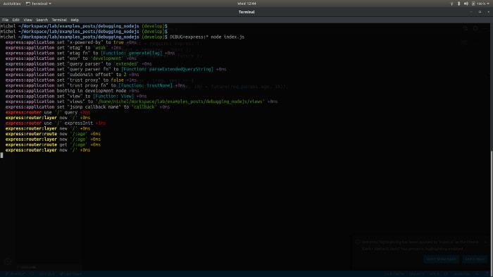 Exemplo debug em nodejs