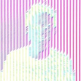Dan Peddle profile picture