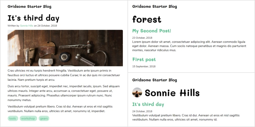 Gridsome starter markdown blog preview with taxonomy