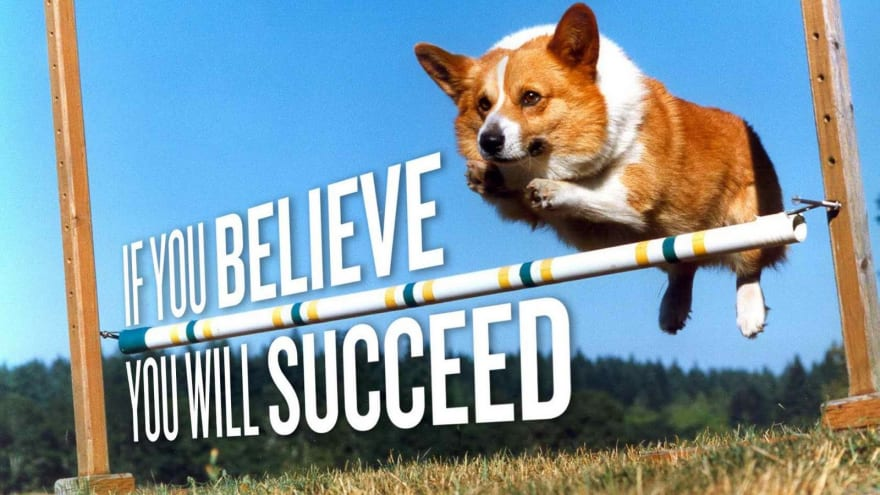 If you believe you will succeed corgi!