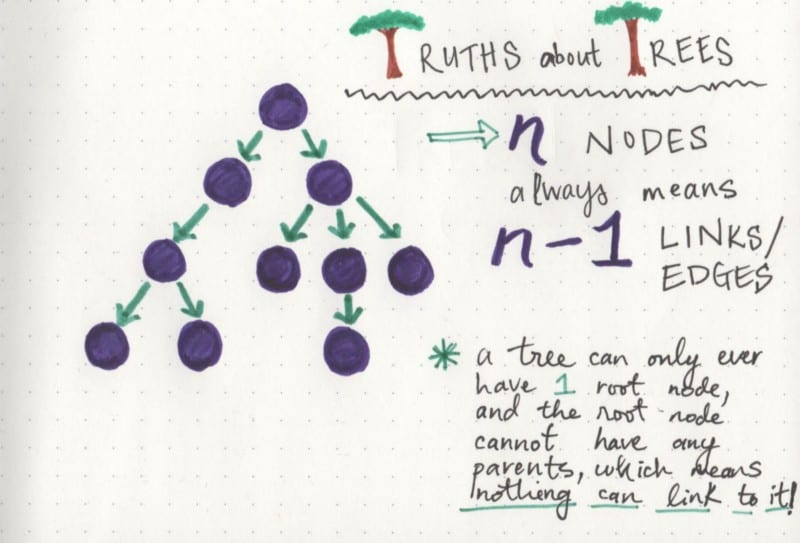 Tree truths: a tree will always have one less link than its total number of nodes