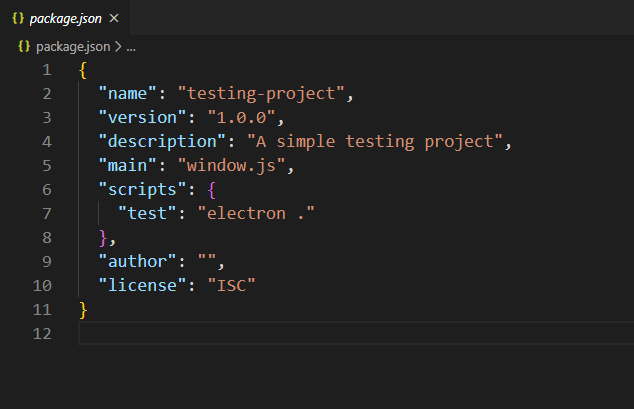 package.json example