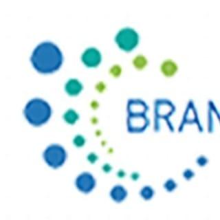 Branding IT Servicve Pvt Ltd profile picture