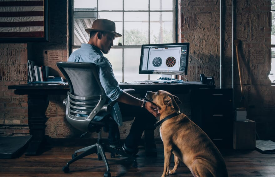 Programmer and dog