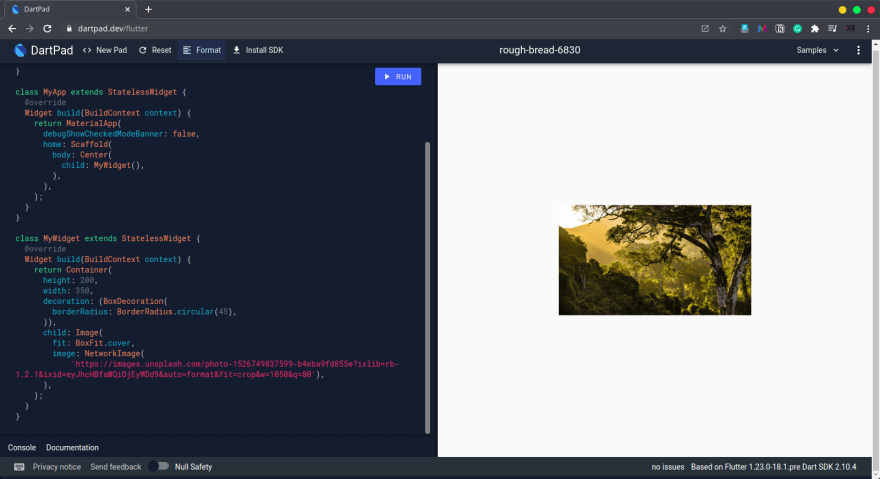 image inside rounded container