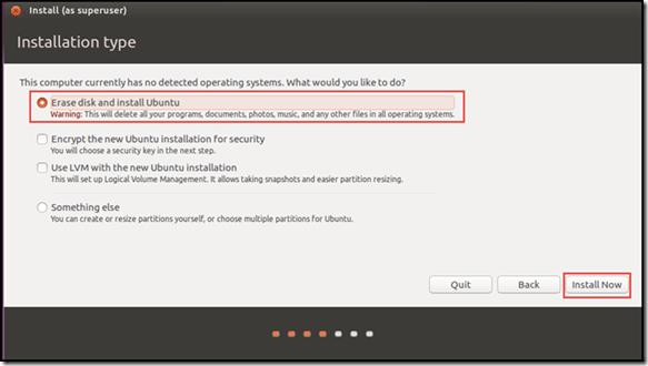 Ubuntu setup and Install - Installation Type