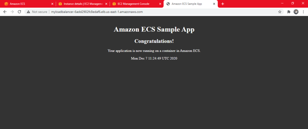 Cover image for Working with Amazon Elastic Container Service