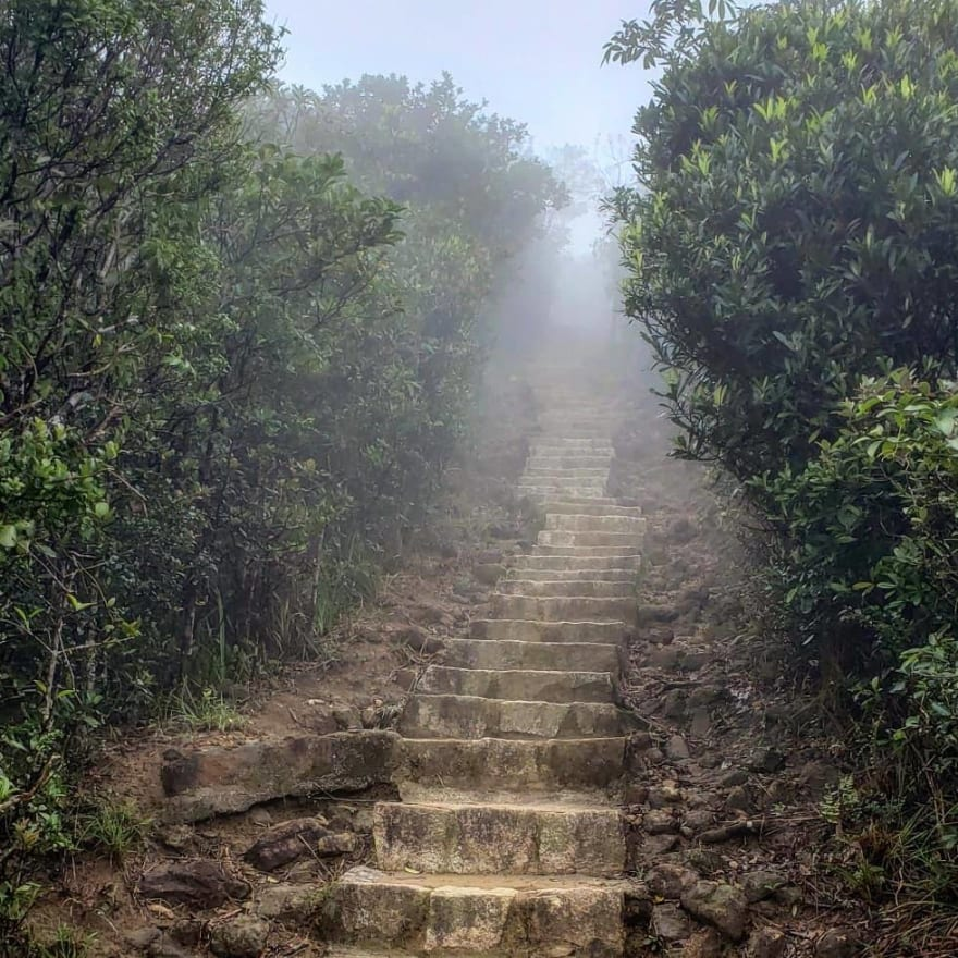 Stairway to the unknown