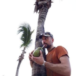 Remo Moro profile picture