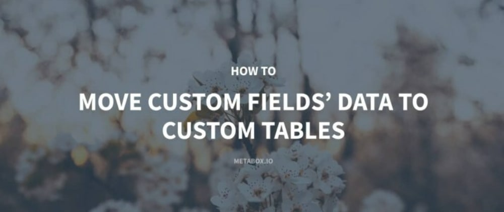 Cover image for How to Move Custom Fields' Data to Custom Tables
