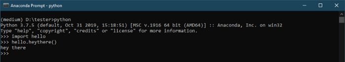 Running the installed module<br>