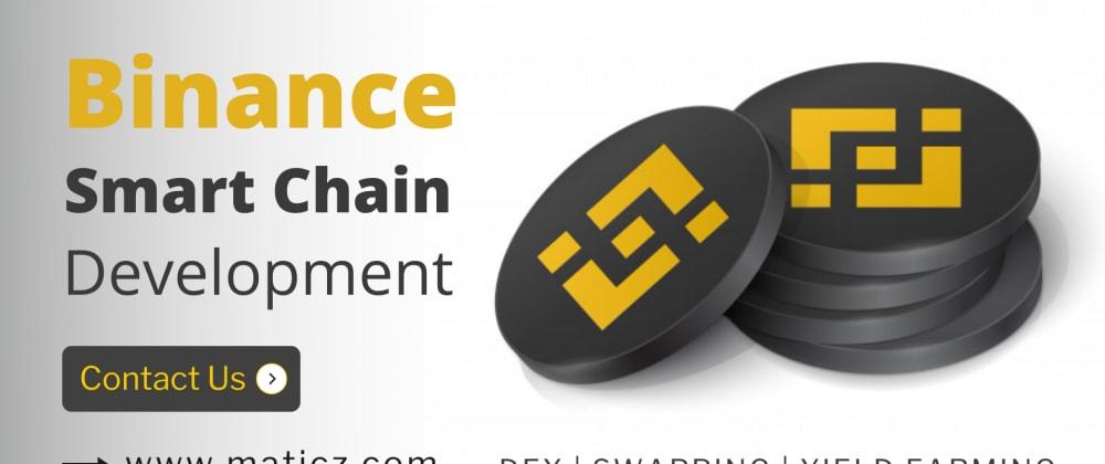 Cover image for Binance Smart Chain Development