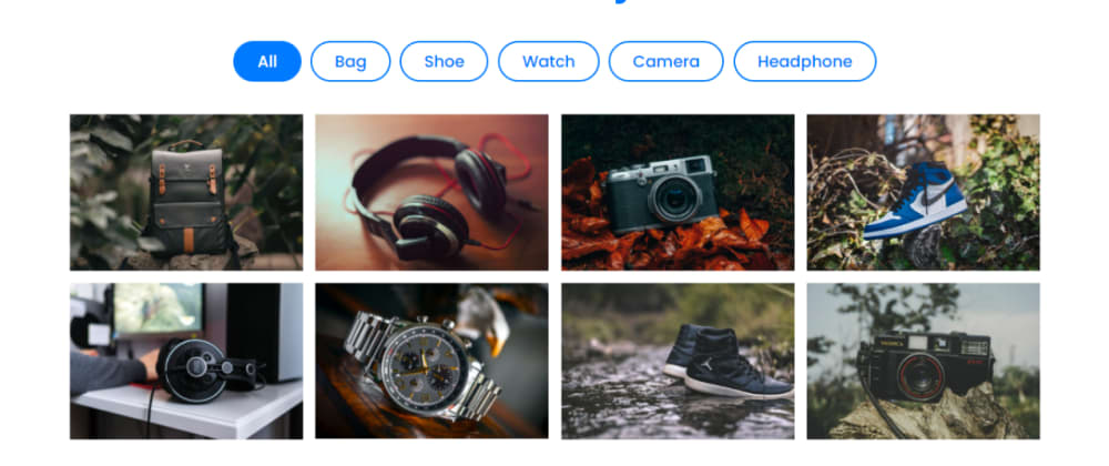 Cover image for Responsive Filterable Image Gallery using HTML CSS & JavaScript